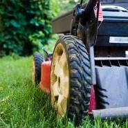 Czy się kierować przy wyborze kosiarki i traktorka ogrodowego?
